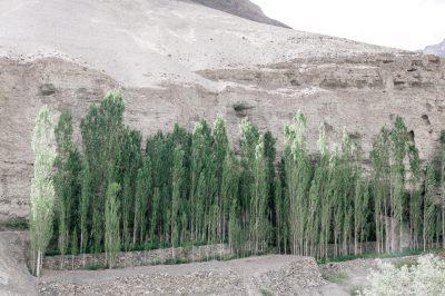 Himalayan Asphalt